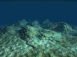 Rocky floor at bottom of sea
