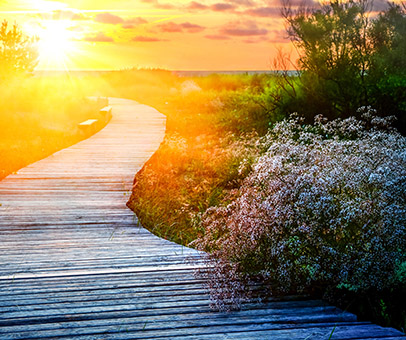 Boardwalk path into sunset